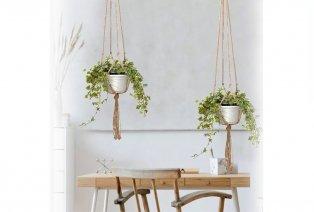 Suspensions pour plantes