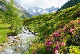 Sommer im österreichischen Zillertal