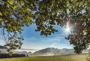 Séjour en demi-pension avec sauna non loin de l'Eifel