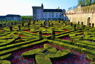 De kastelen van de Loire
