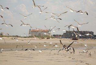 Aufenthalt an der belgischen Küste mit Pfannenkuchen, Kaffee und Extras