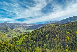 Séjour en demi-pension avec spa en Forêt-Noire