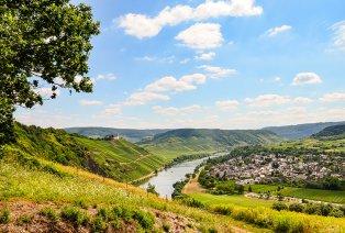 Des vignes à perte de vue en Alsace