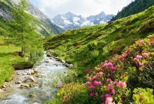 Zomer in het Oostenrijkse Zillertal