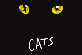 De hitmusical CATS in Paleis 12