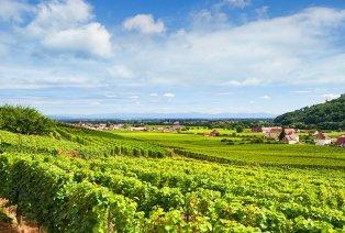 Séjour 100 % détente en Alsace avec dîner trois services