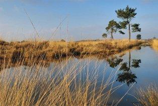Viersterrenverblijf (1, 2, 3 of 4 n.) in Zuid-Nederland