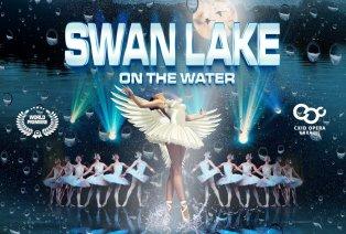 Tickets pour « Le Lac des Cygnes sur l'eau »