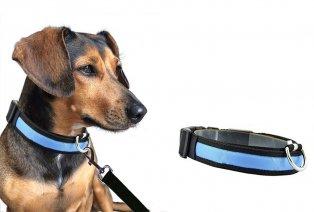 Hundehalsband mit LED-Beleuchtung