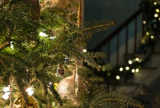 Kerstledslingers