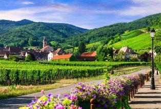 Die Weinstraßen des Elsass