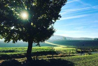Burgundisch genießen in Süd-Limburg
